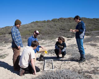 student researchers on coastal project