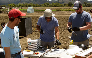 UC Santa Cruz researchers collect samples at a field site for research on microbial activity that can improve water quality (from left: Galen Gorski, Jaime Hernandez, Brendon Stoneburner)