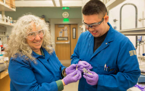 Chemistry professor Rebecca Braslau in her lab with graduate student Chad Higa.