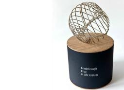 Breakthrough prize award